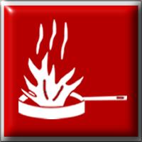 Ansul Amerex Buckeye Kidde Range Guard Pyrochem Protex Fire Systems